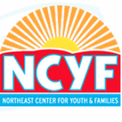 Northeast Center for Youth & Families Launches New Website thumnail